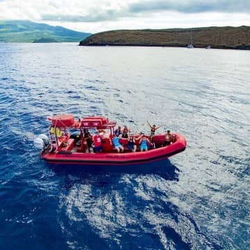 private maui boat tour