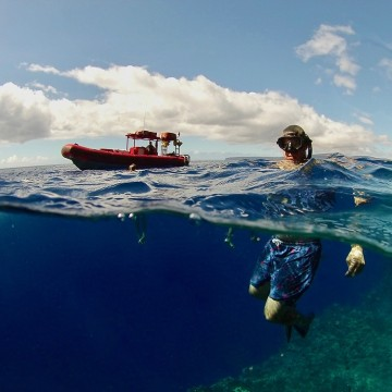 Private snorkeling at Molokini Crater