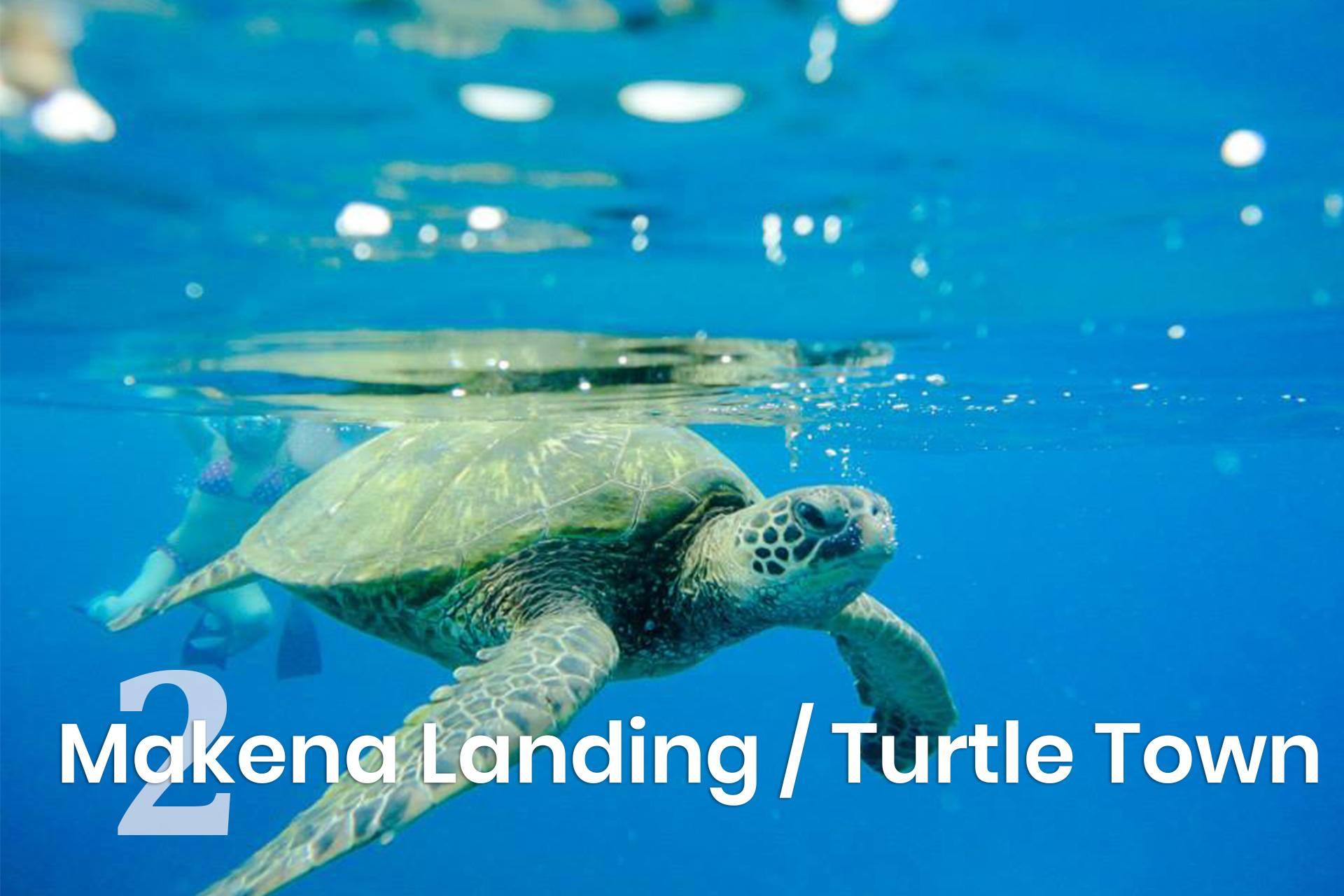 Makena Landing Turtle Town