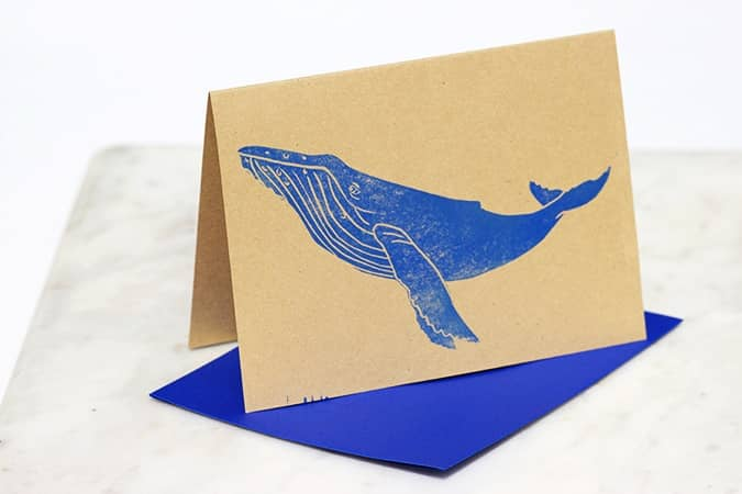 kohola greeting card photo