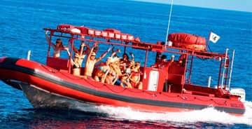 maui boat tour