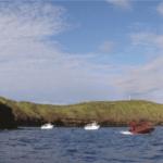 molokini snorkeling tour