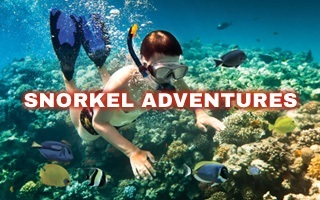 View our Snorkel Adventures Tour Page
